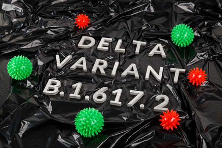 words delta variant B.1.617 laid with silver metal letters and red and green virus models on crumpled black plastic bag background in diagonal perspective.