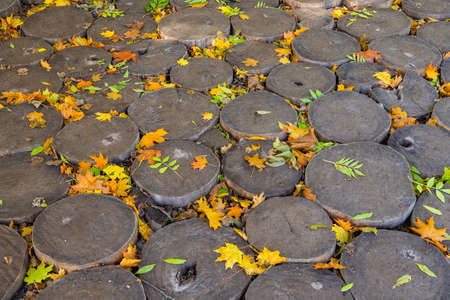 cordwood floor of log end with yellow autumn leaves