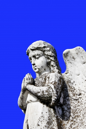 angel cemetery: Angel pray statue on tombstone , cemetery graveyard Isolated Blue  Stock Photo
