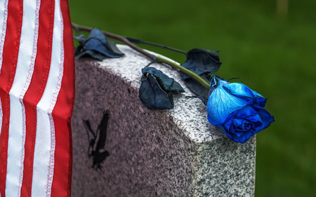 American flag and Blue Rose on a veterans tombstone at an American National Cemetery.