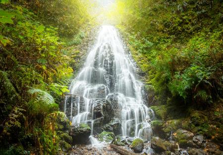 Fairy Falls, Columbia Gorge, Oregon