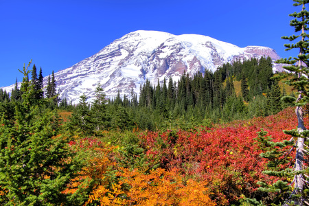 Clear day in early fall on Mt. Rainier. Imagens