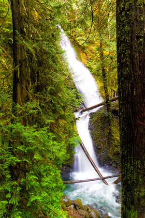 Murhut Falls in the Hood Canal Ranger District on the east side of the Olympics, Washington state, Фото со стока