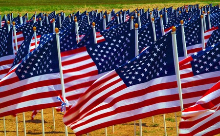 Flags flying in a field to remember Americans killed in Iraq. Editorial