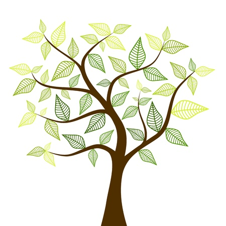 spring tree Illustration