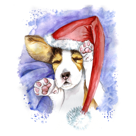watercolor for Christmas and new year, dog in santa claus hat, winter hat, sleeping puppy, paws, dog lies, asleep, for the design of cards or decor, New Years print Zdjęcie Seryjne