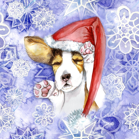 watercolor for Christmas and new year, dog in santa claus hat, winter hat, sleeping puppy, paws, dog lies, asleep, for the design of cards or decor, New Years print, against the background Zdjęcie Seryjne