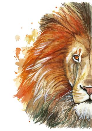Dibujo de un depredador de mamífero animal, león rojo, melena roja, rey-león de las bestias, retrato de la grandeza, fuerza, reino, india, patrones indios, con elementos de una acuarela Foto de archivo