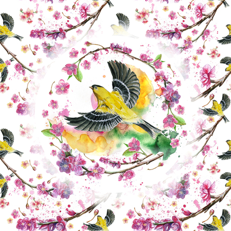 watercolor drawing seamless pattern on the theme of the spring, heat, illustration of a bird of a sparrow-like fleet of Orioles flying, with open wings, feathers, with yellow plumage, hyperrealism,