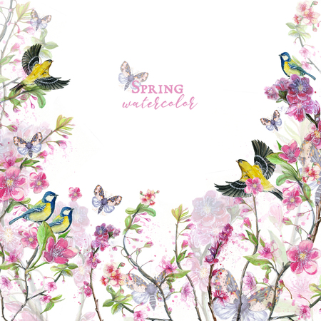 Watercolor drawing of cherry cherry blossoms cherry blossoms, pink flowers, gentle tones, on the theme of spring, mothers day, March 8, birthday with birds, tits and oriol for decor and design of pos