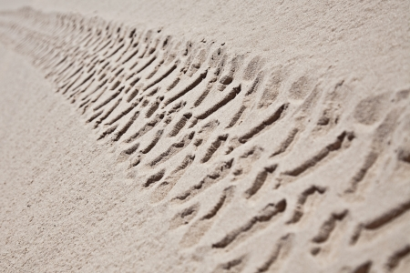 Industrial car tire traces on sand background photo