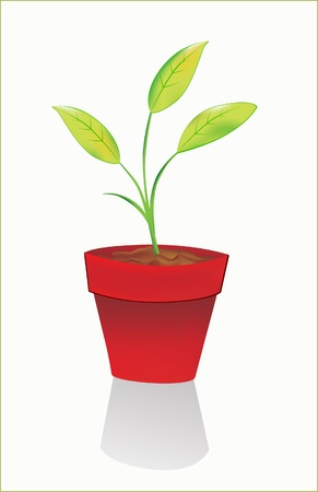 Sprout in the flowerpot Stock Vector - 8973660