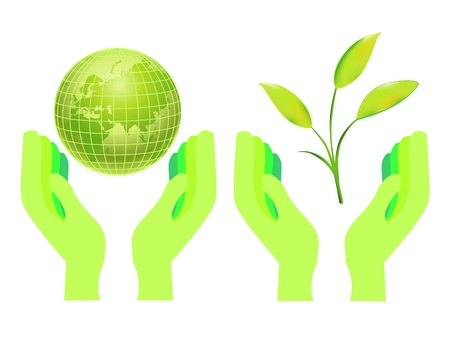 hands holding tree: Hands Holding The Earth Globe Vector Illustration Isolated on White  Illustration