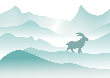 foggy: winter mountains with mountain goat
