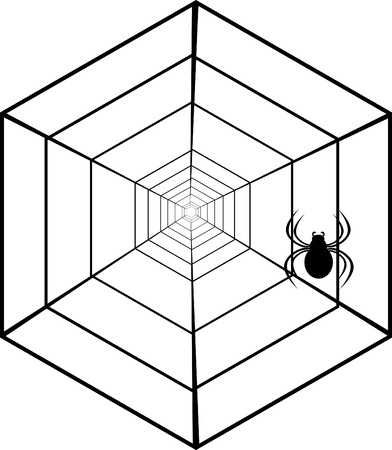 spiders web and spider  Illustration