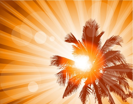 Palm trees Stock Vector - 11551233