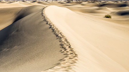 stovepipe: Stovepipe Sand Dunes - Death Valley National Park
