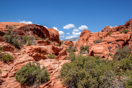 rock canyon: View of Red Rock Canyon