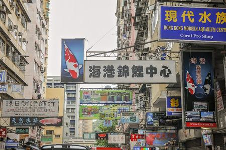 The famous goldfish market in Mong Kok, Kowloon, Hong Kong
