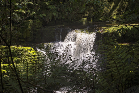 deluge: McLean Falls in the Catlins region of Southland, New Zealand, lower cascade