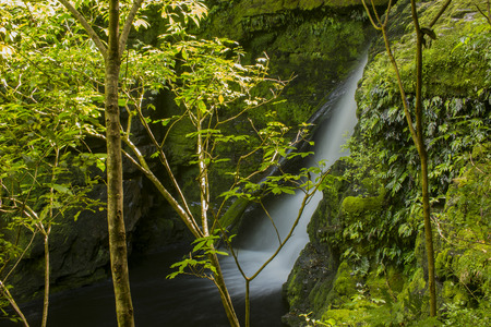deluge: McLean Falls in the Catlins region of Southland, New Zealand with a slow shutter speed to give the water a silky appearance Stock Photo