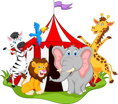 elefante: animales de dibujos animados de circo Vectores