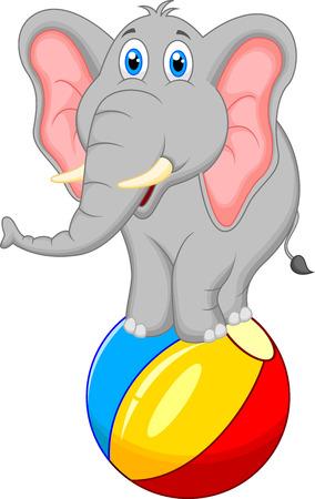 elephant cartoon standing on a ball  일러스트
