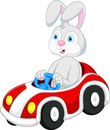 Rabbit cartoon driving car  Vector