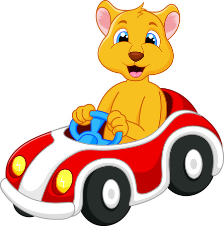 Lion cartoon driving car  Vector