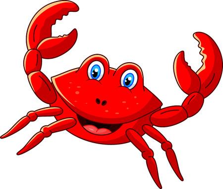 crustacea: Cute crab cartoon