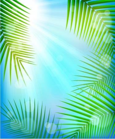 夏の熱帯背景  イラスト・ベクター素材
