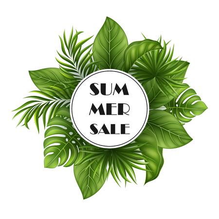 Vector Illustration Summer background with jungle plants  イラスト・ベクター素材