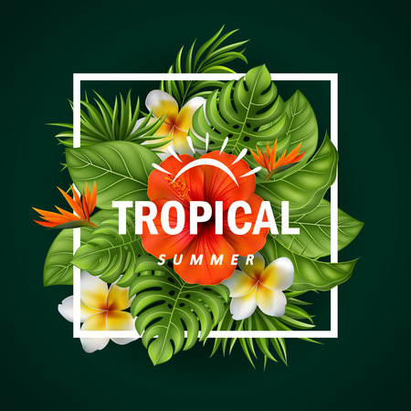Vector illustration of Tropical flowers and leaves