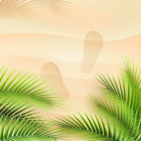 Vector illustration of Palm tree leaves on summer background