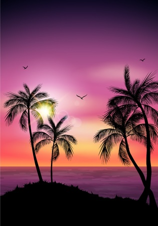 Vector illustration of Palm tree silhouette. Palm tree leaves on summer background
