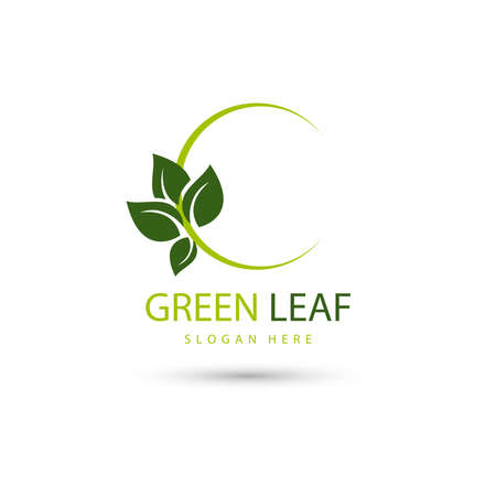 illustration of leaf eco green  design concept template