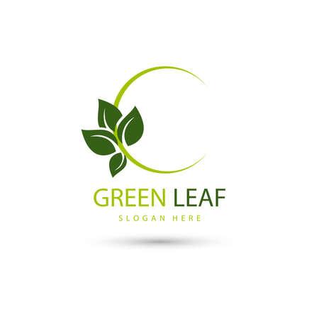 illustration of leaf eco green  design concept template Stockfoto - 156794447