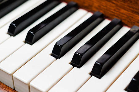 ivories: Piano keys (shallow depth of field). Close-up.