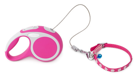 jeweled: Pink retractable leash for dog and jeweled collar with blue bell isolated on white background Stock Photo