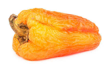 putrid: Spoiled yellow bell pepper isolated on white background. Stock Photo