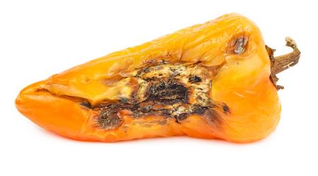 perish: Rotten orange bell pepper isolated on white background. Stock Photo