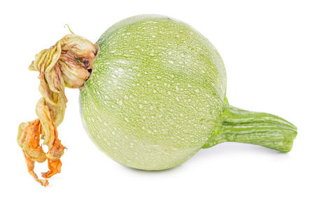 Raw round vegetable marrow with blossom isolated on white background. Zucchini, courgette.