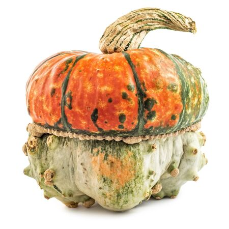 Scary looking pumpkin isolated on white background