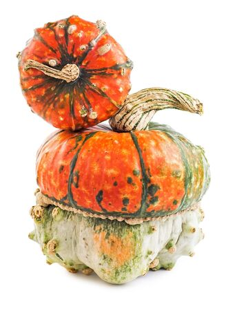Scary pumpkins isolated on white background