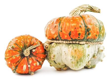 Pair of spooky scary pumpkins isolated on white background