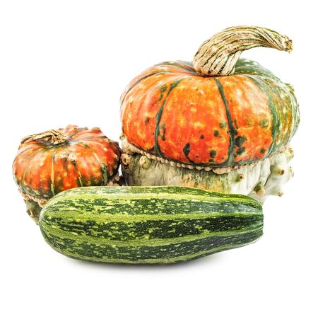 Spooky scary pumpkins and squash isolated on white background