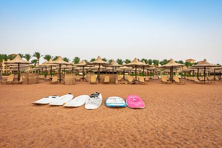 Water surfboards white, blue and pink on the sandy sea shore under the endless blue sky in Egypt. Sports and travel concepts.