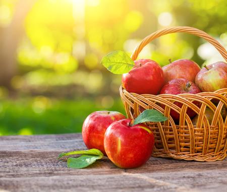 夏草のバスケットで有機栽培のリンゴ。自然で新鮮なリンゴ 写真素材