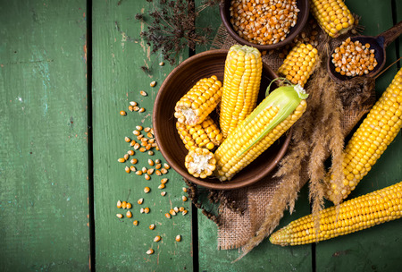 yellow corn: Corn on the plate on a green wooden boards Stock Photo