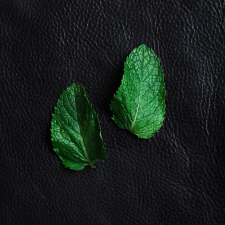 wet leaf: mint leaves on black background Stock Photo